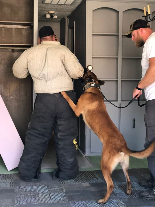 Muskingum County K9 Training